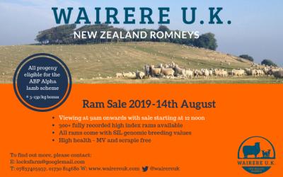 Ram Sale 2019