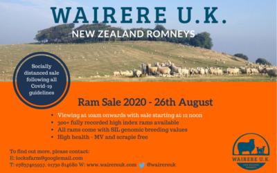 Ram Sale 2020